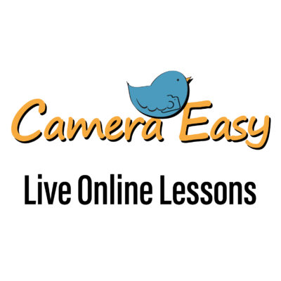 Live on-line lessons